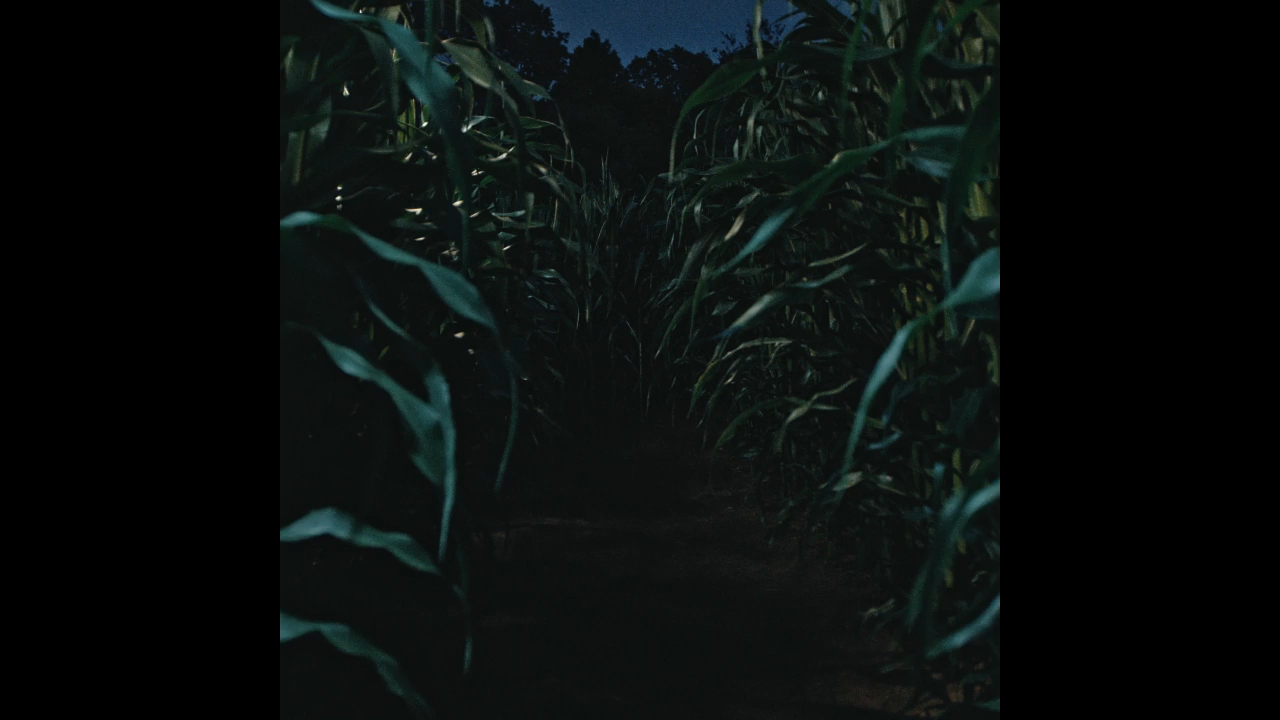 A haunted corn maze is one of several attractions at Ravenwood Haunted Farm.