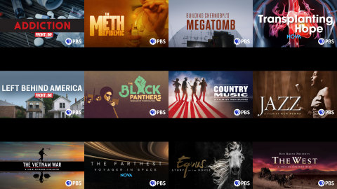 Example of PBS branding in over-the-top (OTT) environment (Graphic: Business Wire)