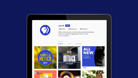 Example of new PBS branding in social media (Graphic: Business Wire)