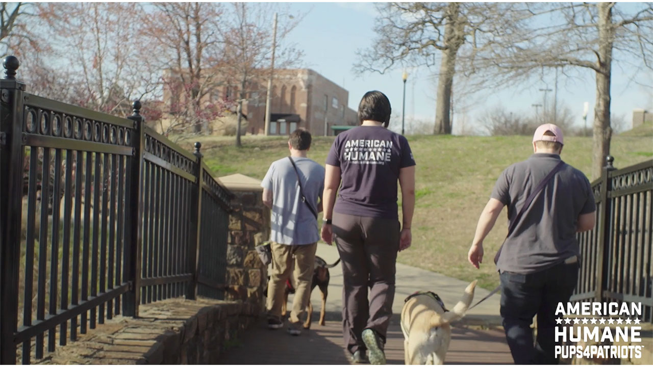 Learn how Pups4Patriots is changing lives at both ends of the leash.