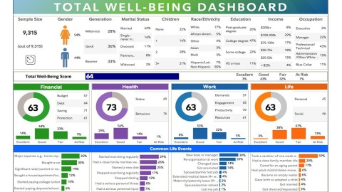 Employer Total Well-Being Dashboard (Graphic: Business Wire)