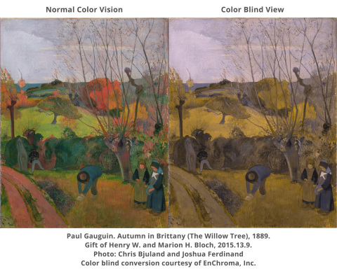 Paul Gauguin. Autumn in Brittany (The Willow Tree), 1889. Gift of Henry W. and Marion H. Bloch, 2015.13.9. Photo: Chris Bjuland and Joshua Ferdinand. Color Blind Conversion Courtesy of EnChroma, Inc. (Photo: Business Wire)