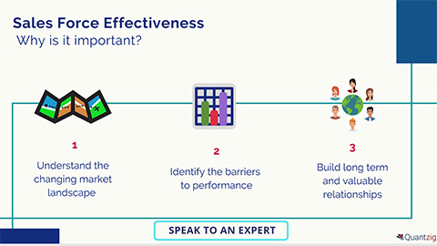 Sales Force Effectiveness (SFE) – What's All the Fuss About? (Graphic: Business Wire)