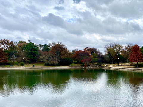 Crow Holdings is teaming up with the Arbor Day Foundation and Texas Trees Foundation to replant trees in Kidd Springs Park in Dallas. (Photo: Business Wire)