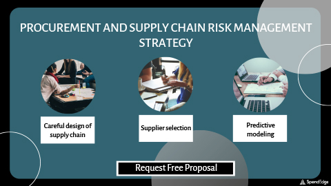 Procurement and Supply Chain Risk Management Strategy.