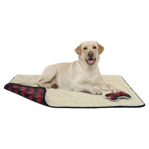 Members can spoil their furry friends with treats and toys from BJ's Wholesale Club, such as the Berkley Jensen Reversible Plush Pet Throw. (Photo: Business Wire)