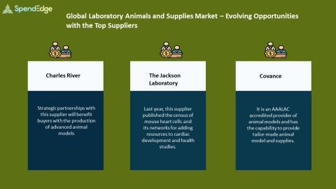 SpendEdge, a global procurement market intelligence firm, has announced the release of its Global Laboratory Animals and Supplies Market Procurement Intelligence Report. (Graphic: Business Wire)