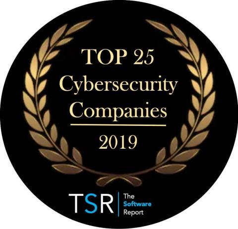 The Software Report Top Cybersecurity Providers (Graphic: Business Wire)