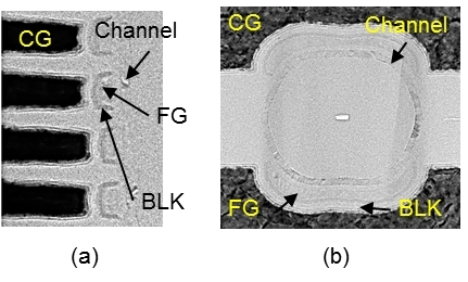 Fabricated semicircular FG cells (a) Cross-sectional view (b) Plane view (Graphic: Business Wire)