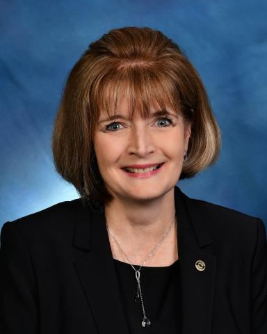 Carolann Haznedar, Allison Transmission Board of Directors (Photo: Business Wire)