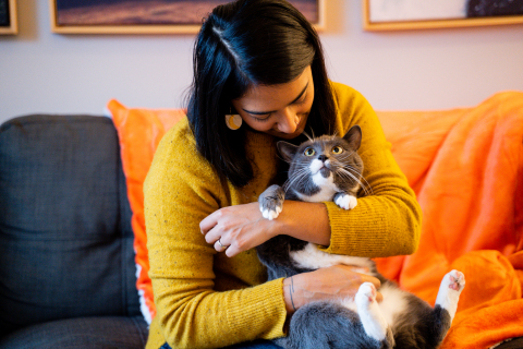 Uplift the Underdog: Cat Edition (Photo: Business Wire)