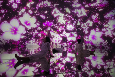 teamLab, Floating in the Falling Universe of Flowers, 2016-2018, Interactive Digital Installation, Endless, Sound: Hideaki Takahashi ©teamLab (Photo: Business Wire)