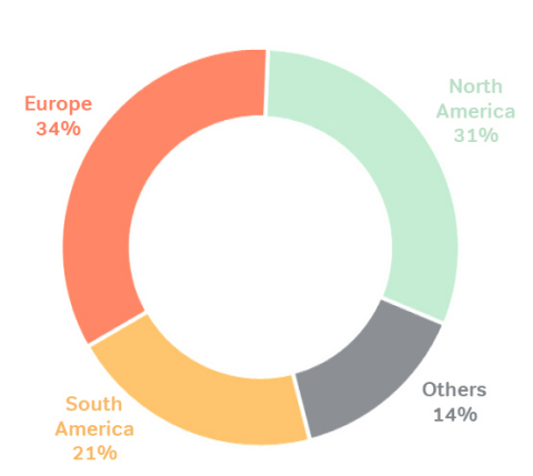Sales by Region: Sales FY19 (Photo: Business Wire)