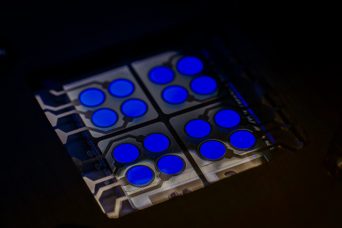 cyBlueBooster - CYNORA's Fluorescent Blue Emitter in OLED device (Photo: Dr. Harald Flügge, cynora GmbH)