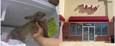 On the left: A Humane Society investigation found over a dozen dead animals stored in a Petland Fairfax freezer. Photo from HSUS investigation. On the right: Woofys storefront in Chantilly, VA.
