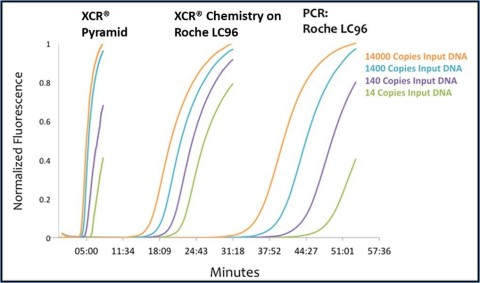 XCR Diagnostics has secured a U.S. patent for converting PCR assays to the company's Xtreme Chain Reaction format that identifies infectious diseases at least 5X faster - even on existing PCR testing equipment (Graphic: Business Wire)