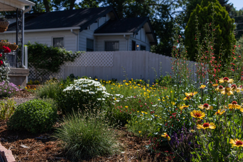 Garden In A Box is an economic and water-saving way for even beginner gardeners to create their own beautiful, sustainable yard! Each kit contains all the materials homeowners need to create a waterwise, drought-tolerant garden that's attractive to butterflies and other pollinators, including 14 to 30 specially selected starter plants, a plant-by-number map and instructional care guide. The creator of Garden In A Box is Resource Central, a nonprofit conservation organization, which sells the kits through partnerships with 26 local municipalities. Order yours online today! (Photo: Business Wire)