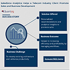 Salesforce Analytics Helps a Telecom Industry Client Promote Sales and Business Development