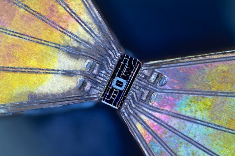 New chip-based devices contain all the optical components necessary for quantum key distribution. The cost-effective platform is designed to facilitate citywide networks. Credit: Henry Semenenko, University of Bristol