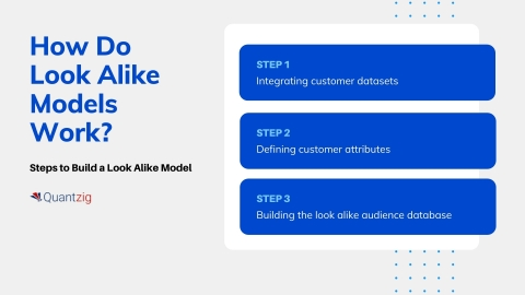 How Do Look Alike Models Work? (Graphic: Business Wire)