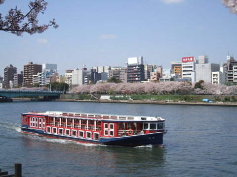 Board the cherry blossom cruise for Asakusa and enjoy the profusion of blossoms blooming on both riverbanks. (Photo: Business Wire)