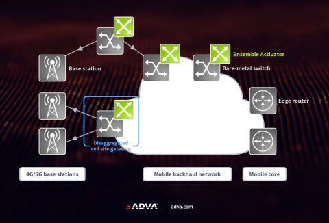 ADVA's Ensemble Activator turns bare-metal switches into powerful Layer 3 devices (Graphic: Business Wire)