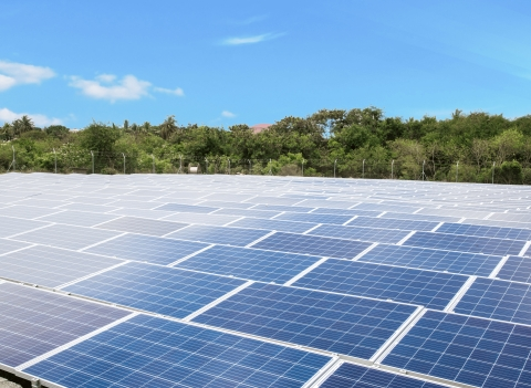 REDAVIA Solar Farm at Regional Maritime University (Photo: Business Wire)