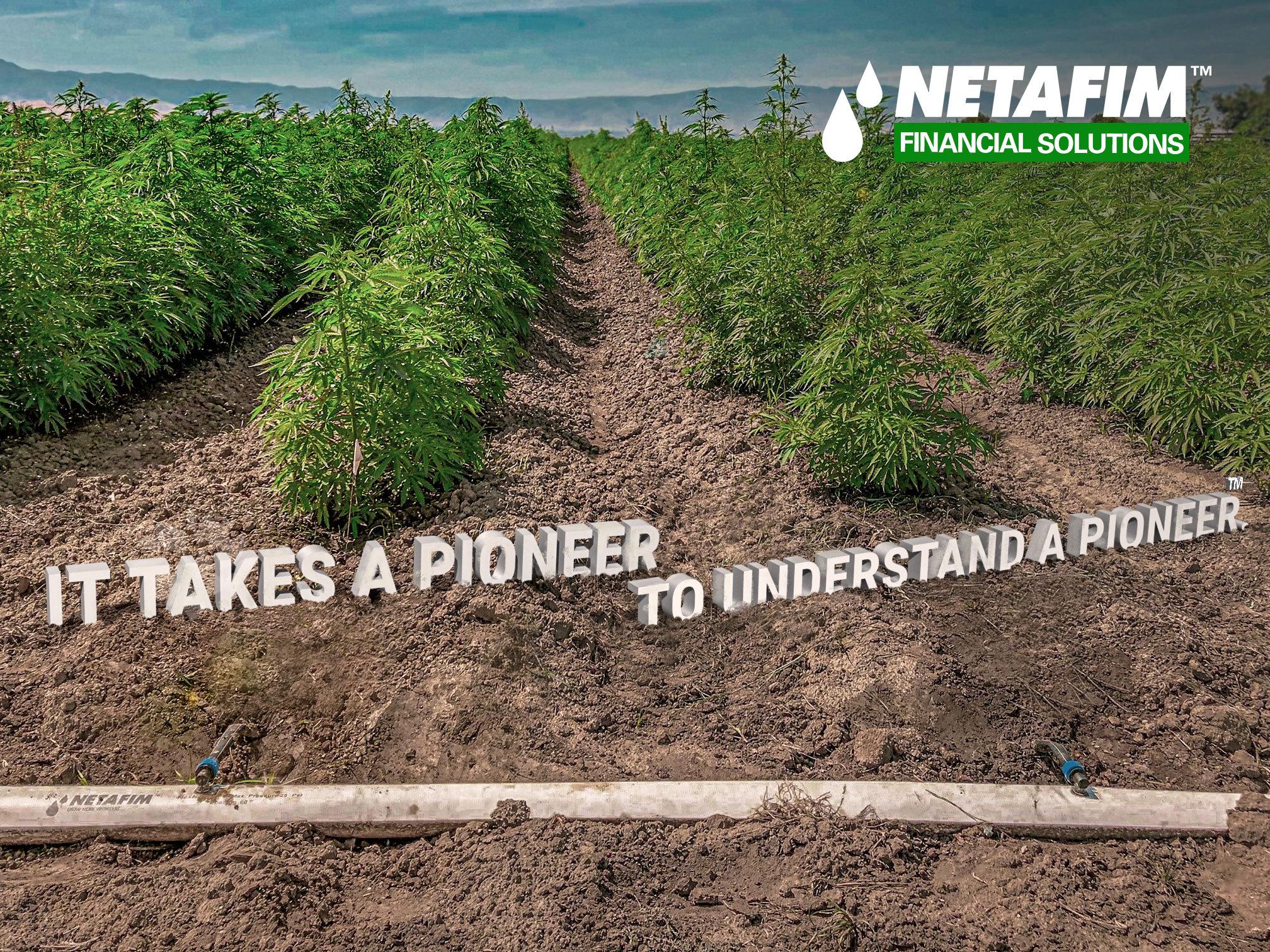 Netafim Financial Solutions Expands Drip Irrigation System Financing Program To Include Hemp Growers Business Wire
