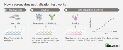 How a coronavirus neutralization test works (Graphic: Business Wire)