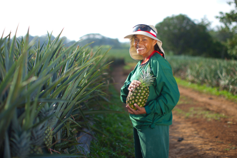 Dole Fresh Fruit, Pineapple Farm (Photo: Business Wire)