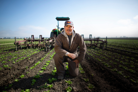 Dole Fresh Vegetables Farm (Photo: Business Wire)