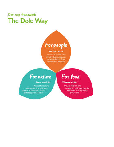 The Dole Way Framework (Graphic: Business Wire)