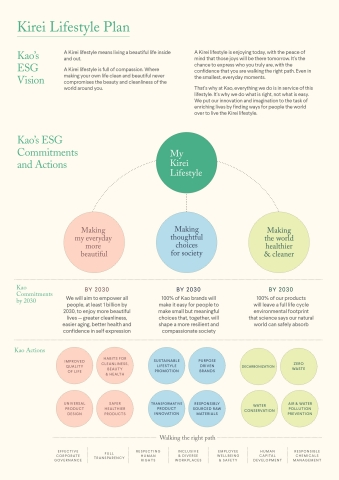 Kirei Lifestyle Plan (Graphic: Business Wire)