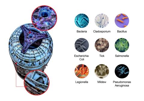 左)下から見た洗濯槽(右)洗濯機で発見された細菌 (画像:ビジネスワイヤ)