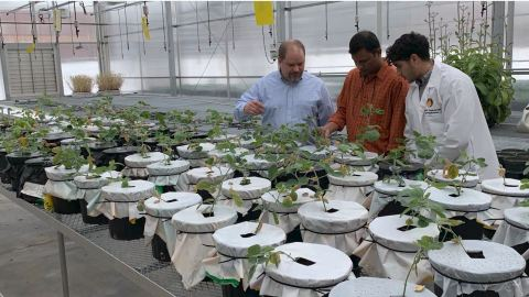Six Agtech Startups Selected for Wells Fargo Innovation Incubator (Photo: Business Wire)