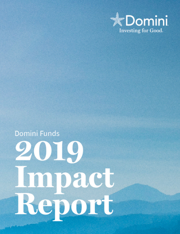Domini Funds 2019 Impact Report (Photo: Business Wire)