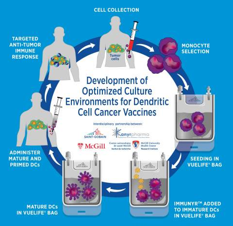 Interdisciplinary partnership between Saint-Gobain, Kanyr Pharma, and McGill in the development of optimized culture environments for dendritic cell cancer vaccines. (Graphic: Business Wire)