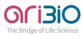 AriBio Announces Completion of Enrollment in Phase 2 Alzheimer's Study with AR1001