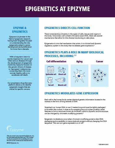Epigenetics Fact Sheet