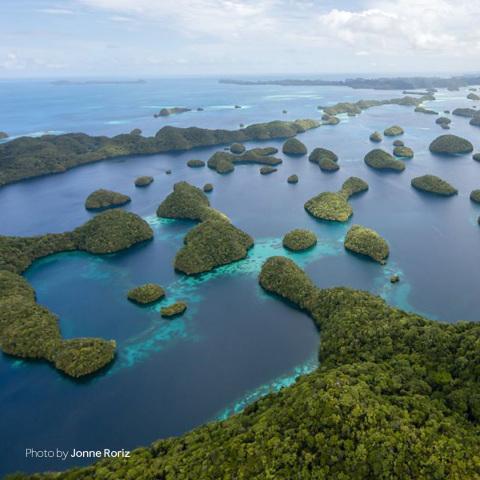 Палау, Филиппины, фотография Джонне Рорис (Jonne Roriz)