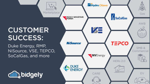 Bidgely UtilityAI platform serving millions of new homes worldwide in 2020, with numerous new utility and energy retailer partners leveraging artificial intelligence platform solutions. (Graphic: Business Wire)