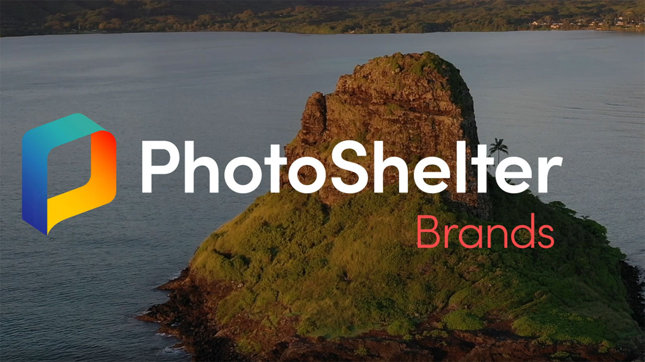 New PhotoShelter AI is set to revolutionize social media workflow