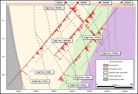 Figure 2. The first complete section at Ikkari shows potential for a very wide zone of gold mineralisation which, if sub-vertical, could be up to 200m horizontal width. Mineralisation is shown to commence at surface to a vertical depth of at least 230m (the limit of current drilling) (Graphic: Business Wire)