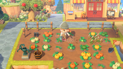 Deck out your home and island for all your awesome autumnal occasions by first purchasing pumpkin starts in-game from Leif year-round or from Nook's Cranny during October. (Graphic: Business Wire)