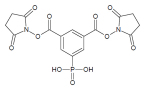 Figure 3: The structure of the PhoX crosslinker developed at the University of Utrecht by Albert Heck and Richard Scheltema. The phosphonate group that enables enrichment of the crosslinked peptides is at the bottom center of the structure. (Graphic: Business Wire)