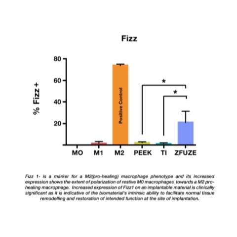 ZFUZE's Fizz 1 expression on implantable material compared to titanium and PEEK (Graphic: Business Wire)