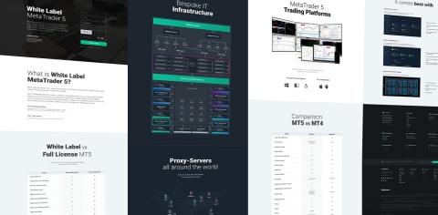 顯示B2Broker白標MetaTrader 5解決方案的新網站螢幕截圖(照片:美國商業資訊)