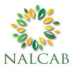 NALCAB organiza la Cumbre Virtual de Política Latina para explorar los problemas prioritarios y las soluciones para la recuperación económica de los EE. UU.