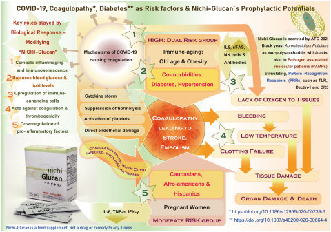 Salient features of AFO-202 secreted Nichi-Glucan on its potentials of prophylaxis to Covid-19 related complications through Blood glucose, cholesterol and coagulation system balancing. (Graphic: Business Wire)