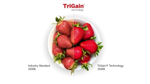 TriGain technology has the power to revolutionize color rendering in retail locations. (Photo: Business Wire)